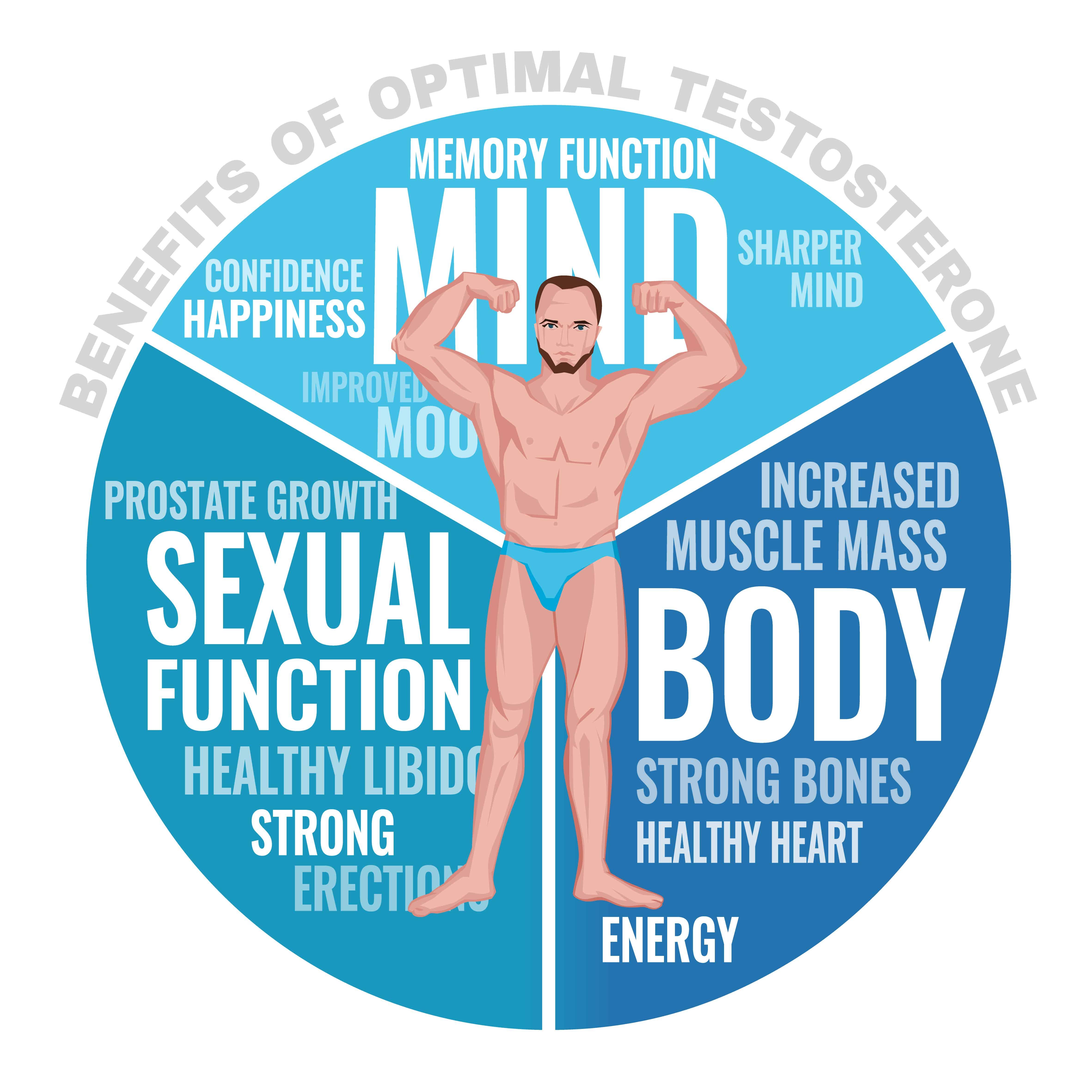 テストステロンは男性にとって不可欠な栄養素