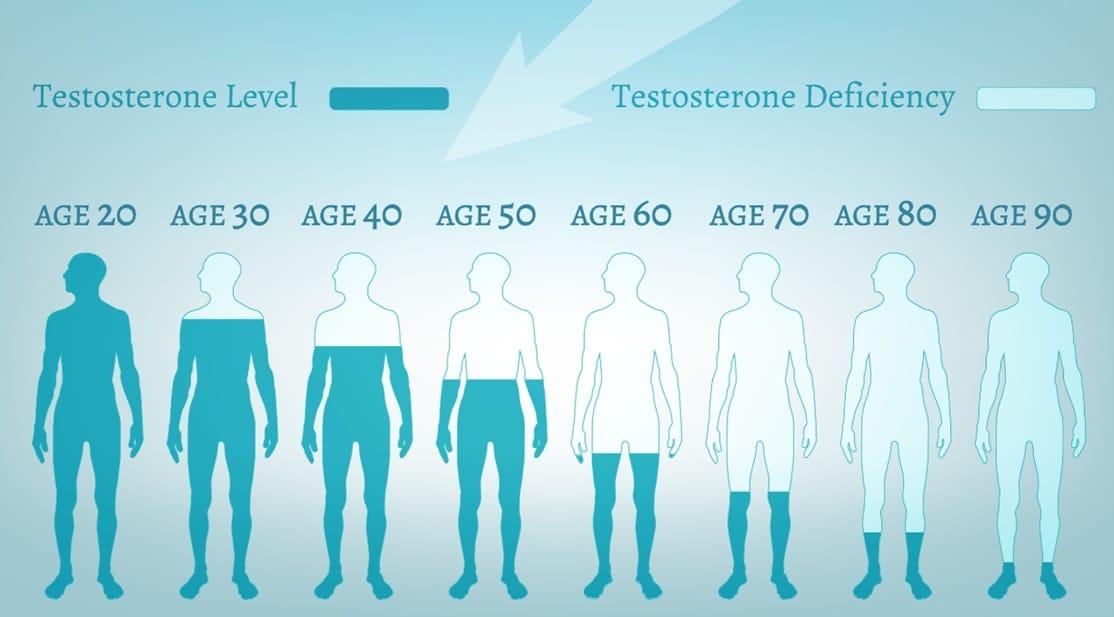 テストステロン量の低下