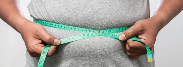 肥満のもと