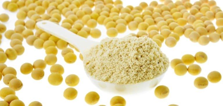 大豆を原料にしたソイプロテイン