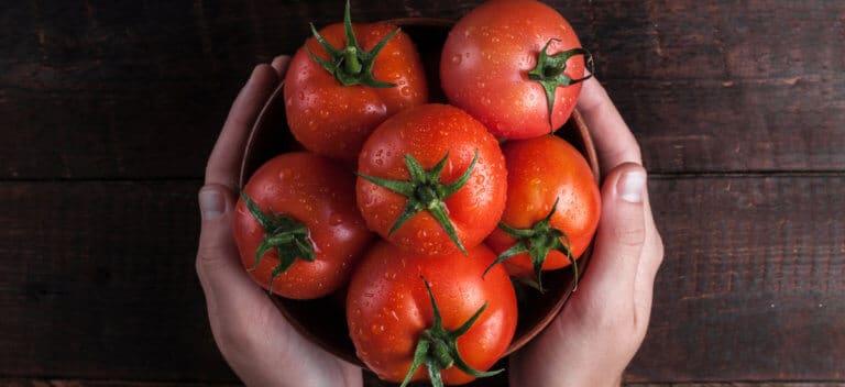 食べる精力剤と言われるトマトとは