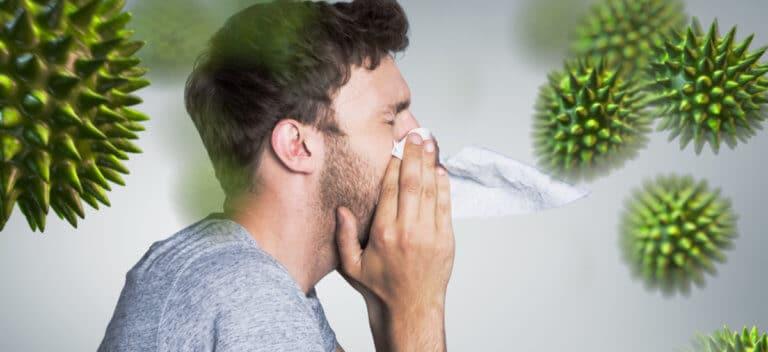 免疫力の強化
