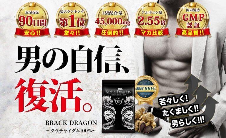 ブラックドラゴンのコンセプト