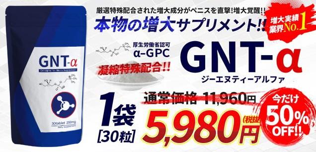 GNT-αの公式サイト