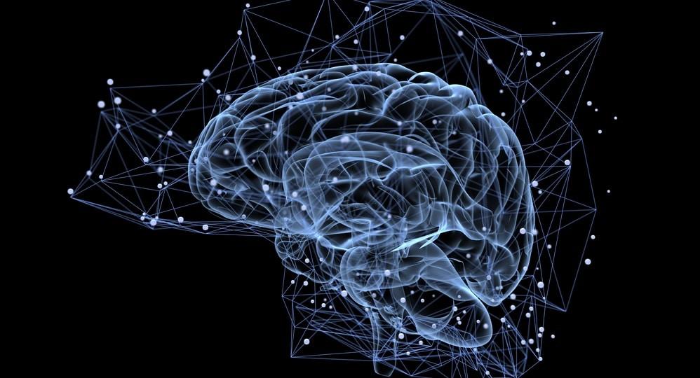 脳のコンセプト