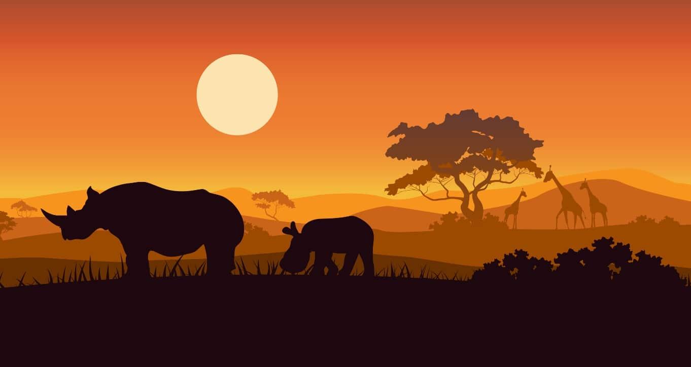アフリカの環境