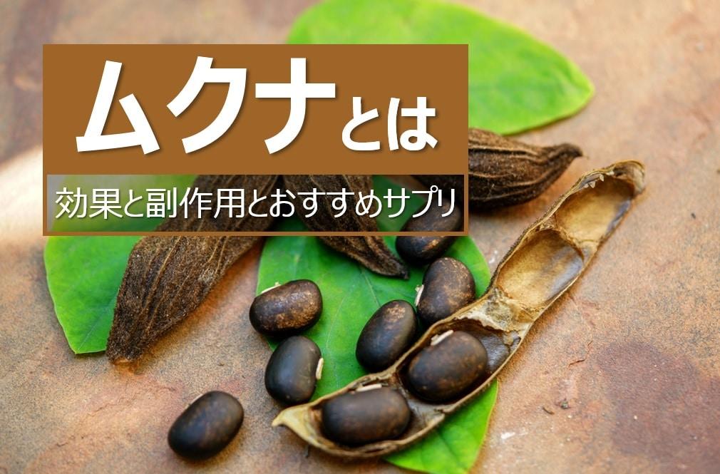 ムクナの効果と副作用とおすすめサプリ