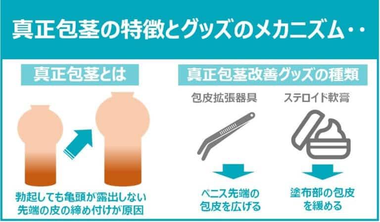真正包茎の特徴と改善器具のメカニズム