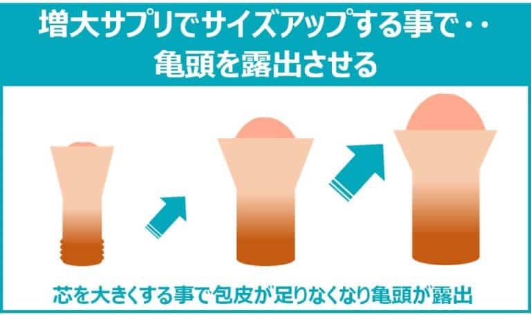 増大サプリによる包茎の治し方