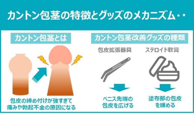 カントン包茎の特徴と器具のメカニズム