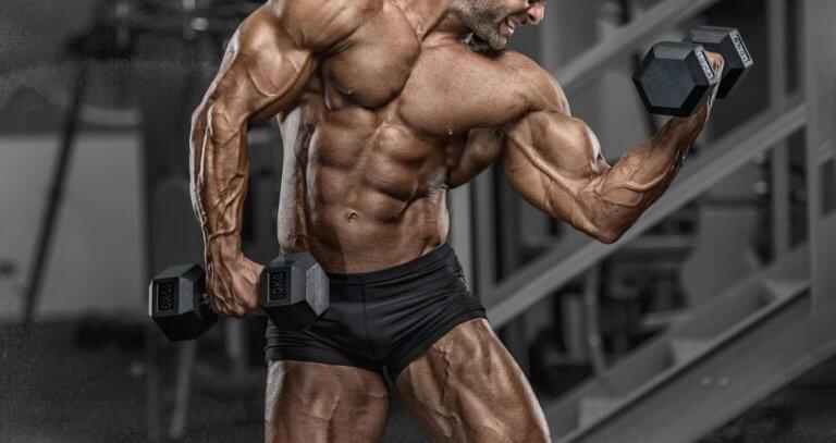 テストステロンが多いと筋肉が付きやすい