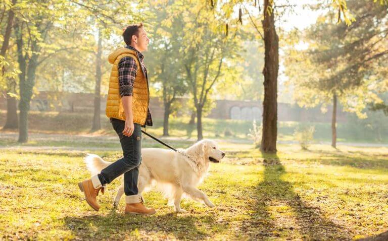 ペットを連れて歩く男性