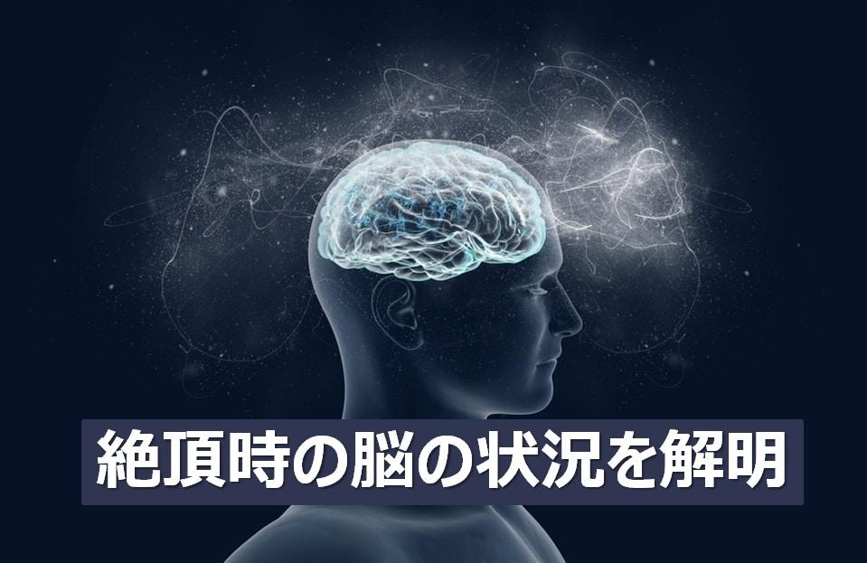 絶頂時の脳の状況