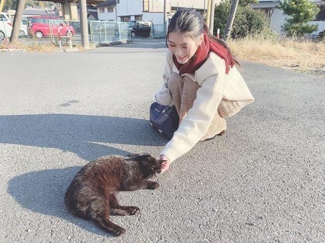 野良猫と戯れる本庄鈴さん