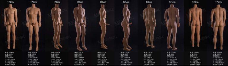 男性型ラブドールのペニスのサイズ