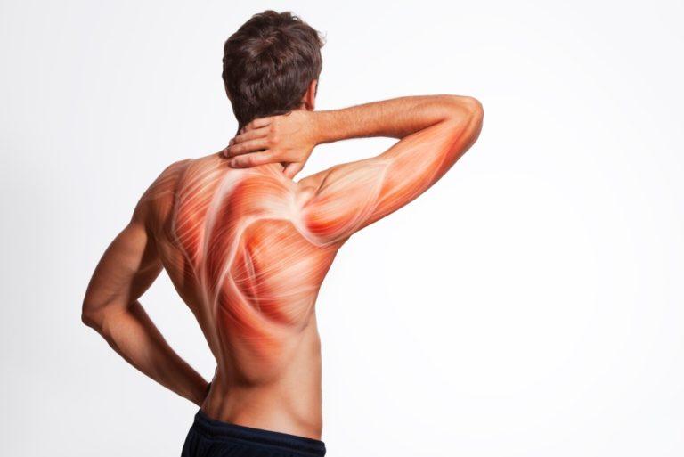 背中や腰を痛める