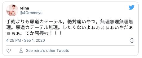 Twitter尿道プラグ