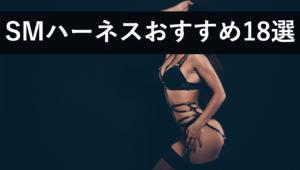 【セクシー過ぎ】ボンテージ拘束SMハーネスおすすめ18選